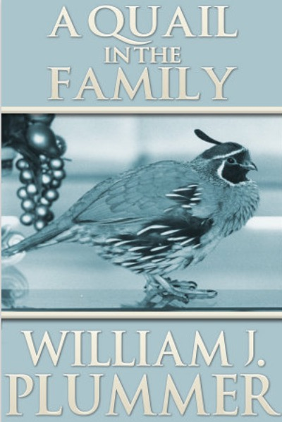 A_Quail_in_the_Family_thumb