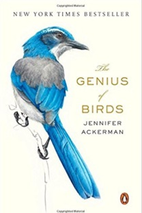 Genius_of_Birds_Ackerman_Cover